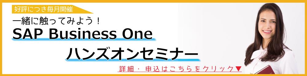ノンカスタマイズ型ERPパッケージSAP Business Oneハンズオンセミナー